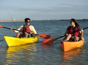 Oyster Sailing (Discover kayaking) (7)
